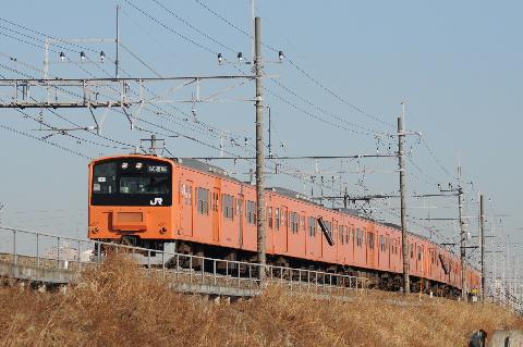 5_20100204200240.jpg