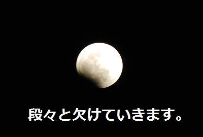 2011_1210_214514-DSC_0861.jpg