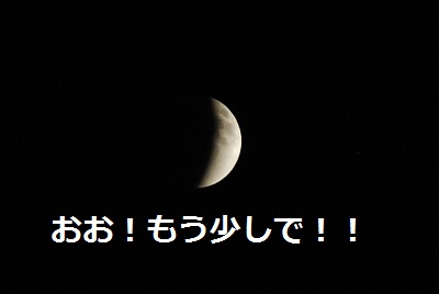 2011_1210_222842-DSC_0910.jpg
