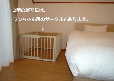 2011_1223_154549-P1120666.jpg