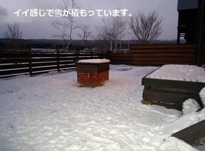 2011_1223_164537-P1120673.jpg