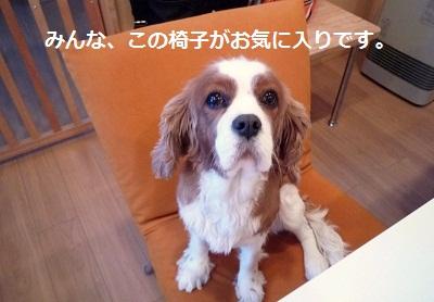2011_1224_072646-P1120733.jpg