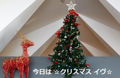 2011_1224_093241-P1120745.jpg