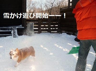 2011_1224_105405-P1120787.jpg
