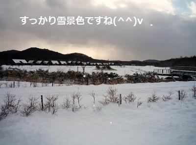 2011_1225_091828-P1120878.jpg