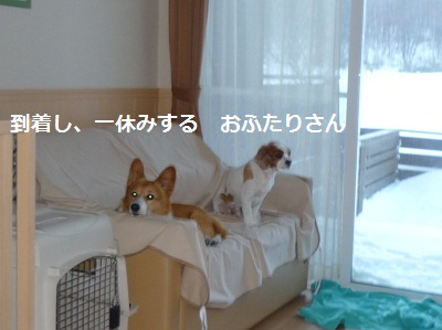 2011_1230_161356-P1120956.jpg