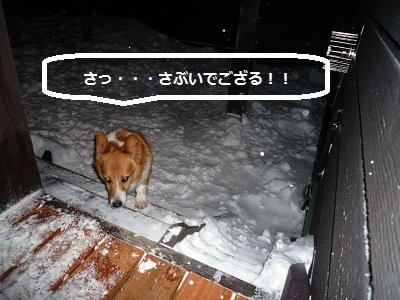 2011_1230_175106-P1120976.jpg