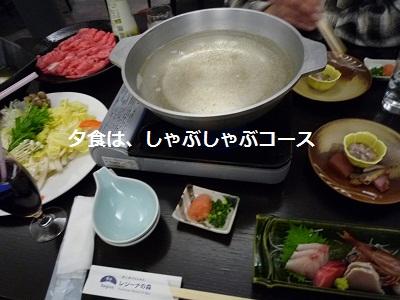 2011_1230_183227-P1120984.jpg
