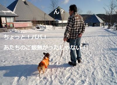 2011_1231_084830-P1130017.jpg