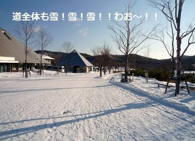 2011_1231_084852-P1130018.jpg