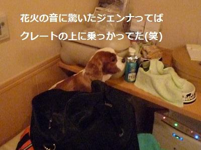 2012_0101_001807-P1130156.jpg