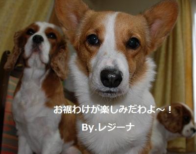 2012_0120_122029-DSC_0952.jpg
