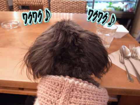 0106-7_20110107202225.jpg