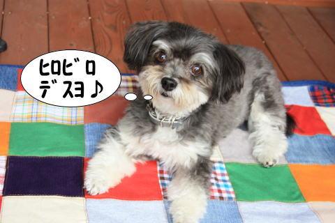 1001-11_20101001141750.jpg