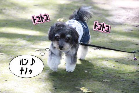 1006-8_20101006203651.jpg