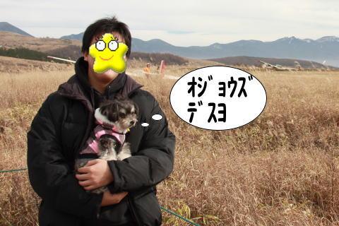 1125-12_20101125190118.jpg