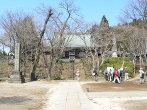 本土寺(ブログ)
