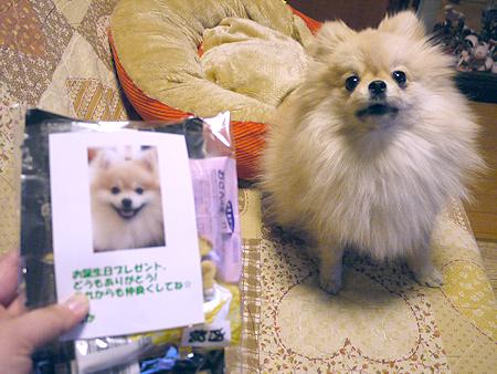 2010/1/26 りむさんよりお返しプレゼント1