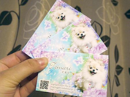 2010/2/5 ストロベリー名刺屋さん2