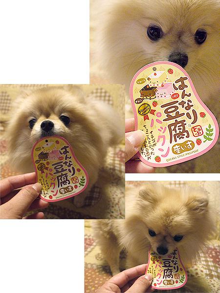 2010/2/8 ともひろ☆さくらママパパさんよりはんなり豆腐座いす4