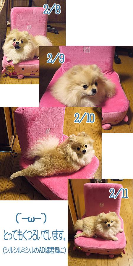 2010/2/8 ともひろ☆さくらママパパよりはんなり豆腐座いす7