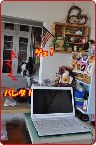 2013-3-9-19.jpg