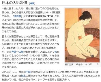 wiki入浴3