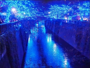 中目黒で青の洞窟イルミネーション