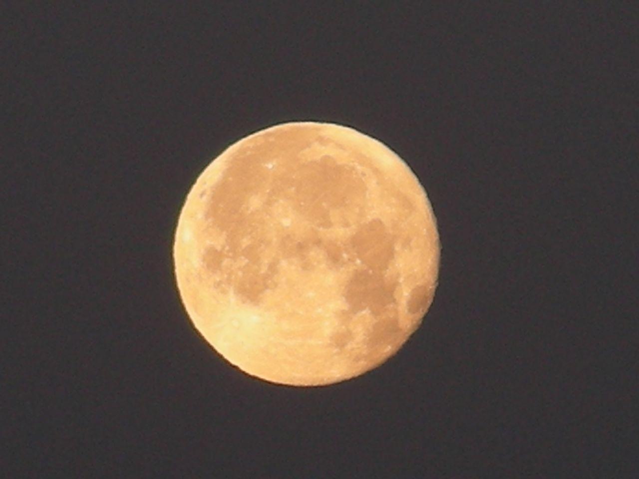 2011/1/21朝、満月