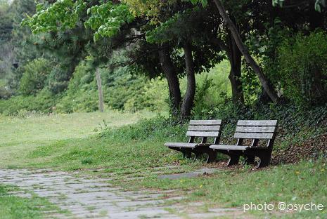 昼下がりのベンチ