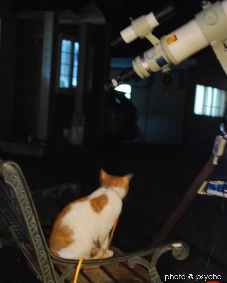 プシュケと天体望遠鏡