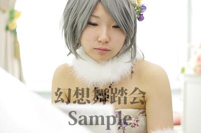 sample33.jpg
