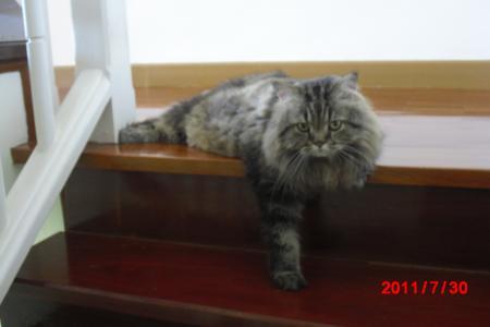 ばいもん階段で1