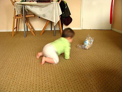 Crawling 1