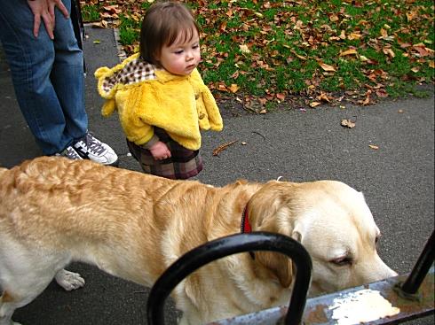 Himegimi with a dog