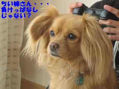 ge-mu4.jpg