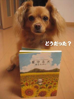 hosimamoru3.jpg
