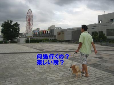 odaiba3.jpg