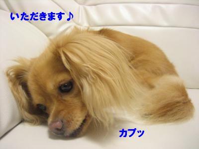 oyasyoku4.jpg