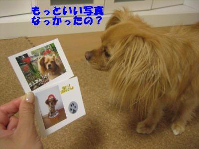 sakuhin2.jpg