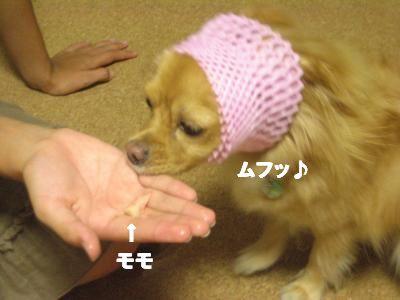 sunu-do5.jpg