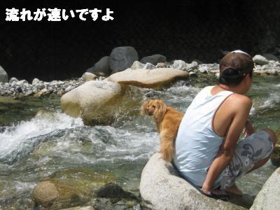 tannzawa5.jpg