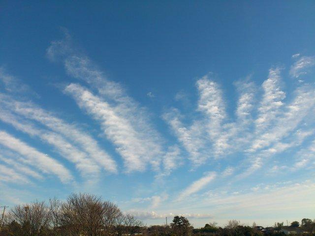 s縞々の雲