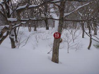 s0419番
