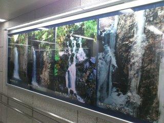 s泉中央駅の写真2