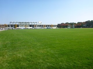 s芝生の運動場2