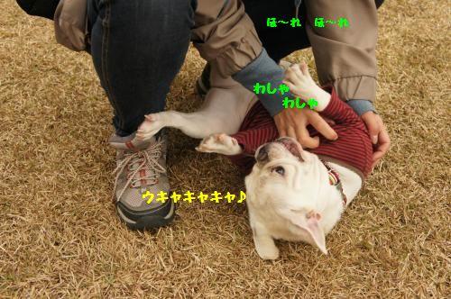 024_convert_20111201160813[1]