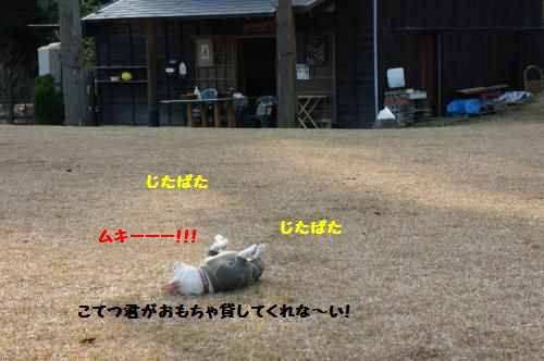 060_convert_20111207191737[1]
