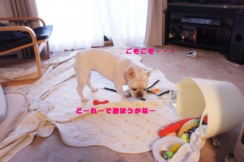 045_convert_20120110131947[1]