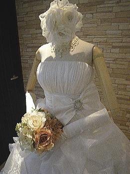 新作ドレス1